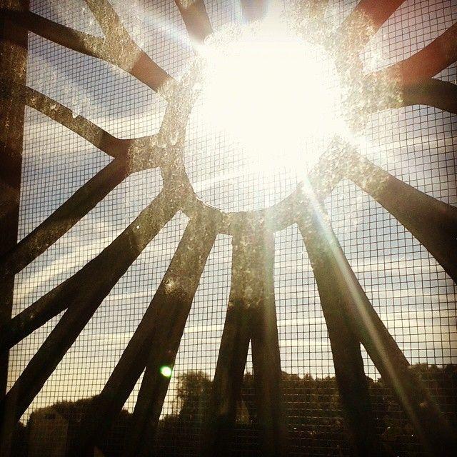 Il sole all'improvviso