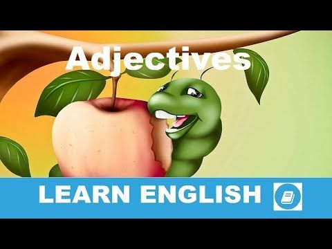 Adjectives 2 - Vocabulary Flashcards