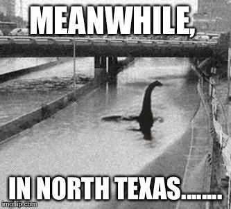 9ffa9576d8fd1db39c1b4c51a0863fdc texas flood weather texas flood meme life's a laugh! pinterest texas flood, meme,Houston Flood Meme