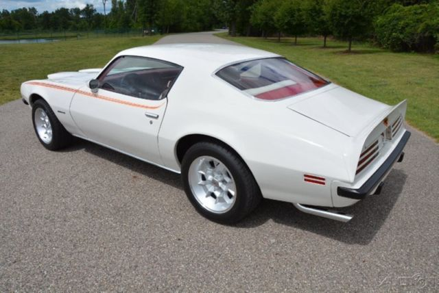 1974 Pontiac Firebird Formula 400 4 Speed FREE Shipping WOW Colors - Classic Pontiac Firebird 1974 for sale