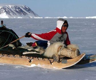 Le petit chasseur de l'Arctique