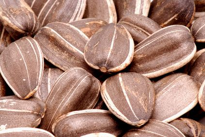 #63 What Are the Benefits of Eating Sunflower Seeds?