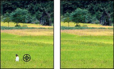 Adobe Photoshop Elements7 * Korrigieren größerer Mängel