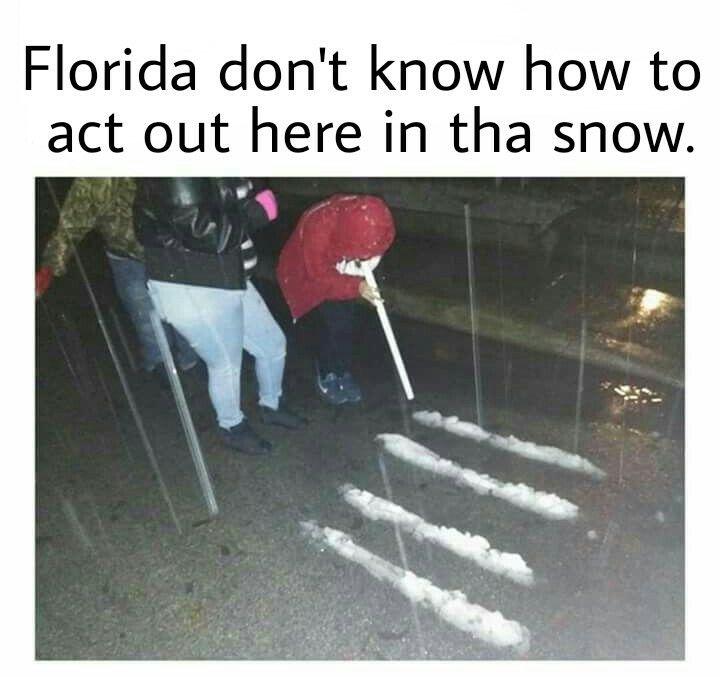 Hoe Larious Xd Best Funny Jokes Drug Memes Popular Memes
