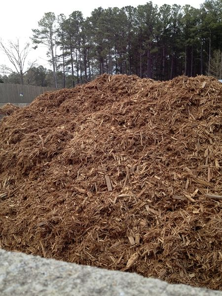 Cypress Mulch is a product known for its durability and resistance to fungus and insects. By retaining moisture, Cypress Mulch is the perfect decorative, natural ground cover for all your bedding areas. It is softer than most mulches and is also great for playgrounds.