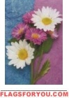 Daisies and Asters Impressions Flag - 1 left