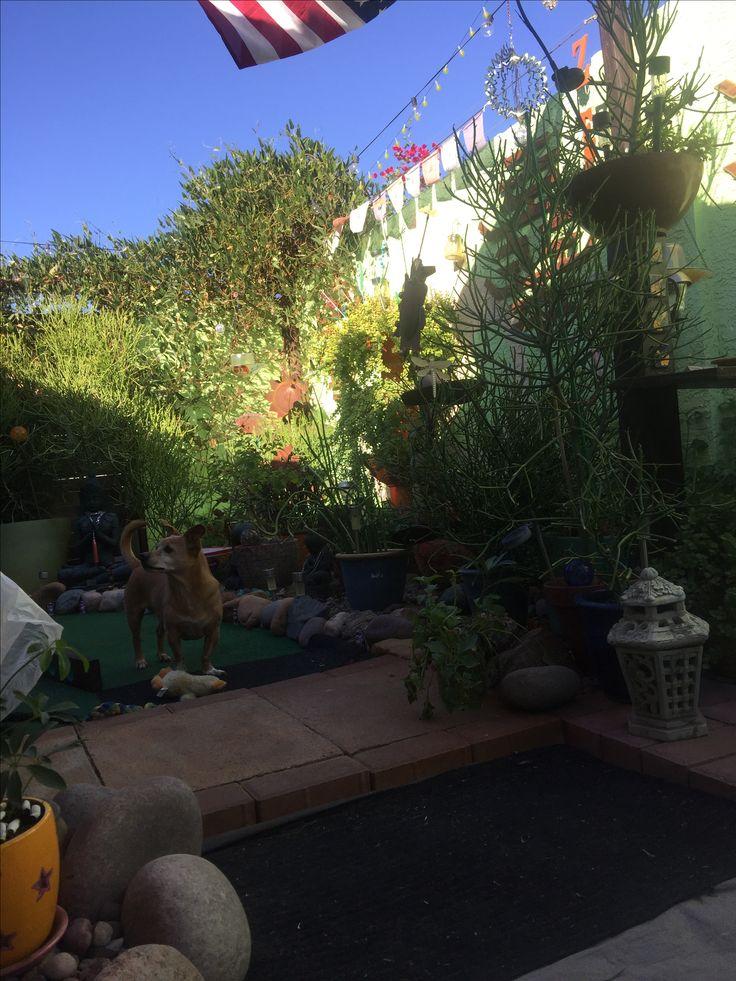 Zen Gardens Garden Projects The 53 best