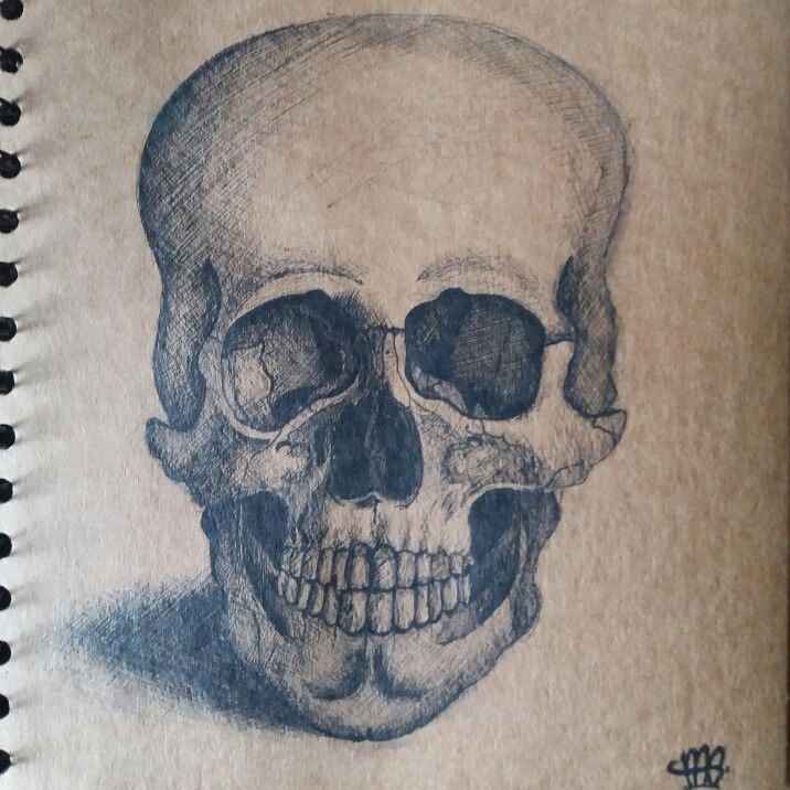 Old skull drawing, fine liner on brown paper, all crosshatching