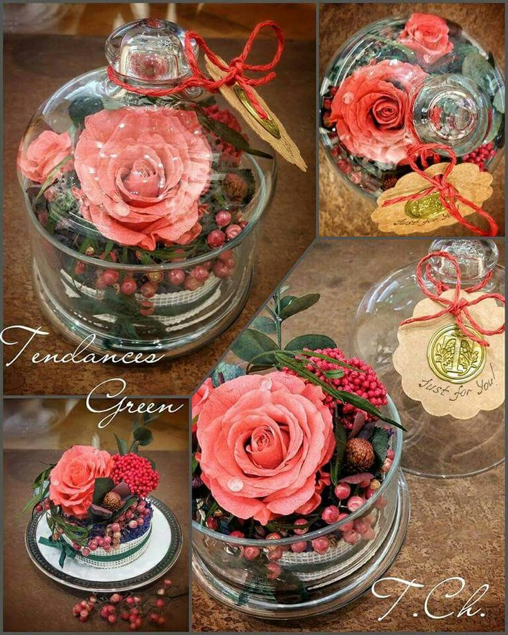 "Preserved Arrangement ""Just for You"""