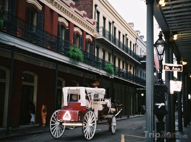 Fotka, Foto Kočár pro turisty (New Orleans, USA)