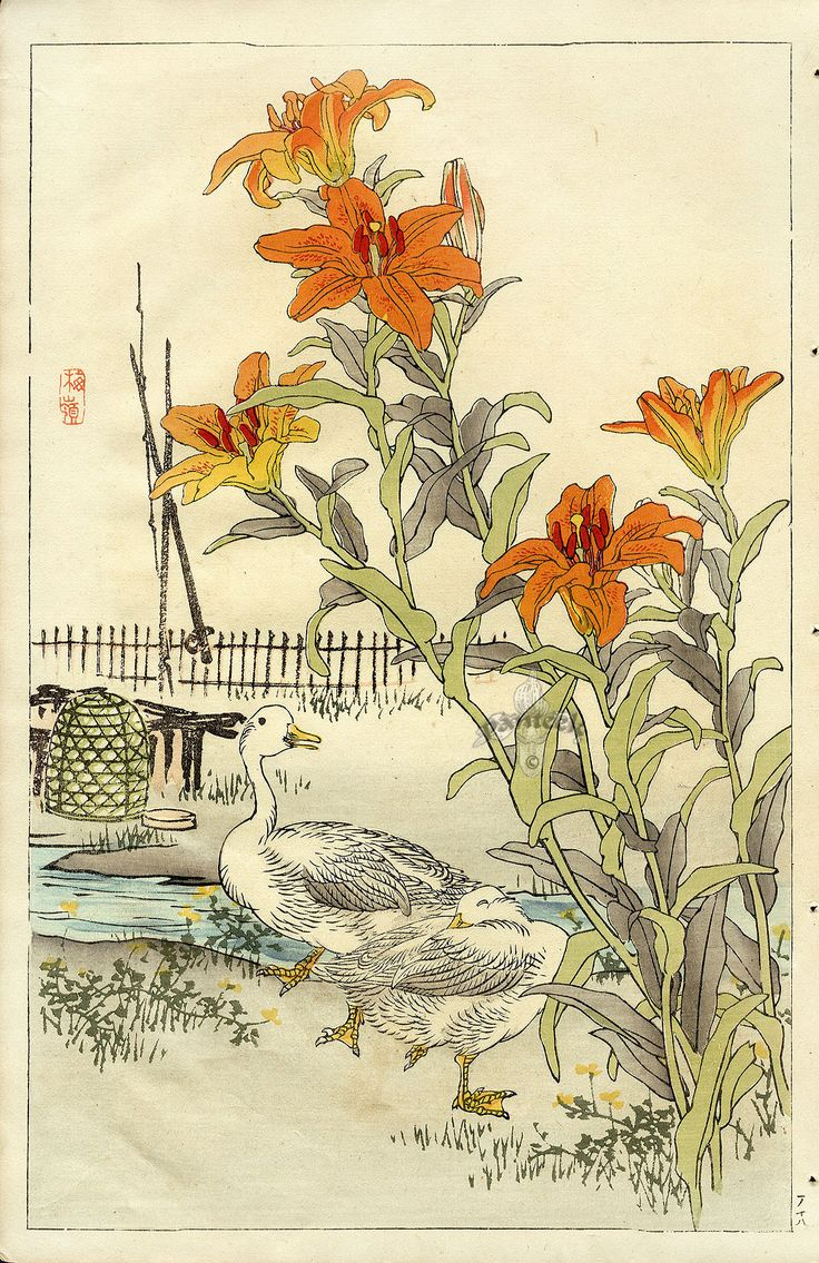 the birds and flowers of kono bairei | Bairei Flower and ...