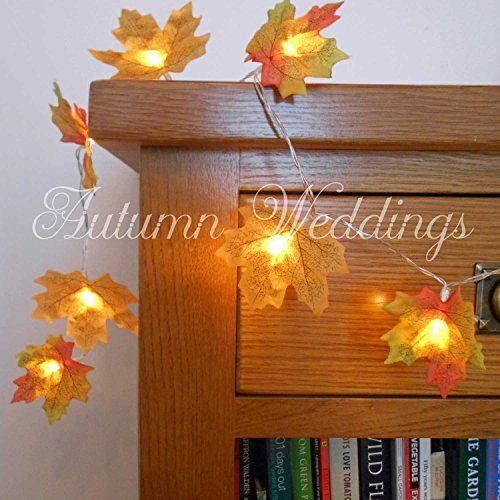 Price:£17.49 2m 20 LED Mixed Golden Yellow Autumn Leaves Fairy Lights / String Lights / Garland with Lights - Battery Powered - Wedding Decorations