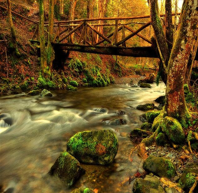 Small Bridges: 1000+ Images About Wooden Bridges On Pinterest