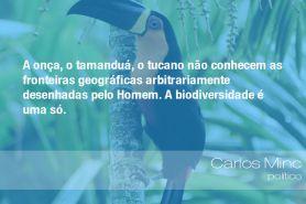 """""""A onça, o tamanduá, o tucano não conhecem as fronteiras geográficas arbitrariamente desenhadas pelo Homem. A biodiversidade é uma só."""" - Carlos Minc, político"""