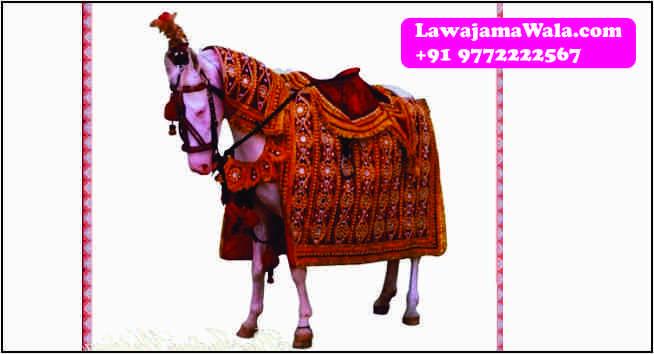 ghori ghodi for groom jaipur jaipur baraat procession royal welcome royal baraat royal baggi victoria baggi cinderella baggi special palki doli +91 9772222567