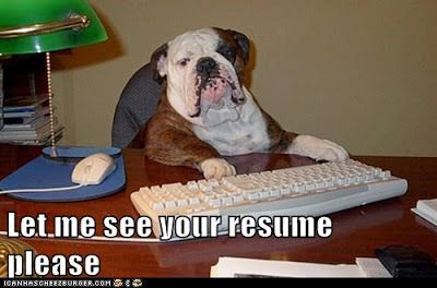 What if you went to a job interview, and you found this!!! | funny Bulldog