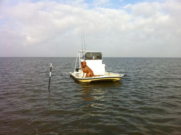 Shoalwater 14.5 Cat tunnel hull with anchor method - 2CoolFishing | Texas Scooter | Pinterest ...