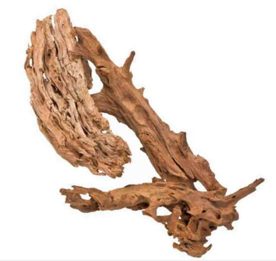 PISCES Malaysian Driftwood