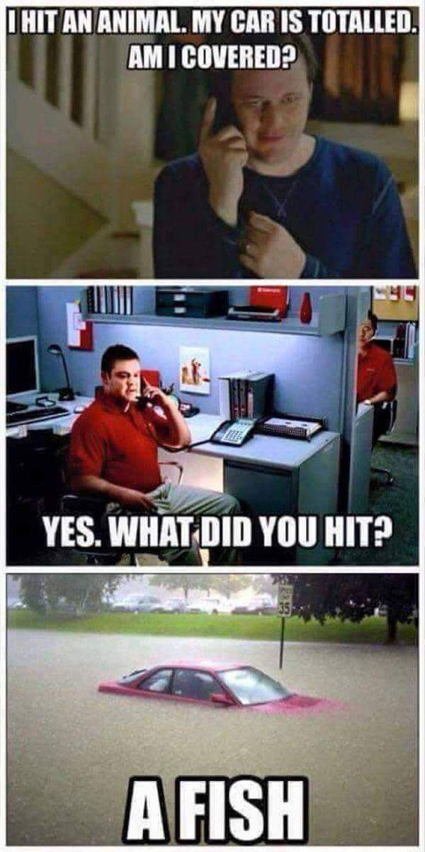 It's Jake... at State Farm | Funny | Pinterest | Funny ...