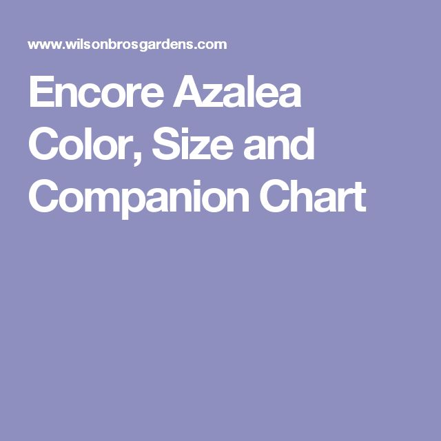 Encore Azalea Color, Size and Companion Chart