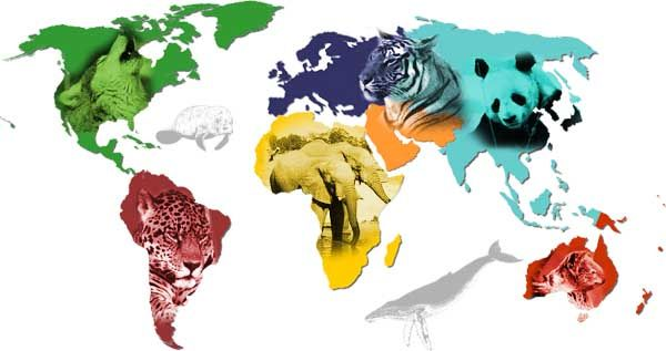 Humans are beginning to push many species to the level of being critically endangered!