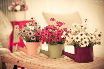 Flores no regador