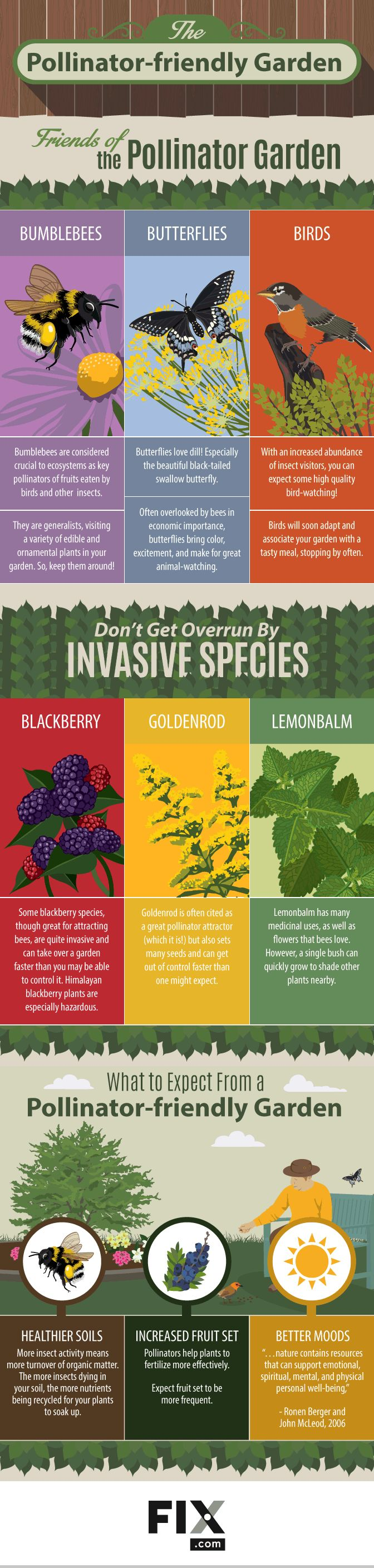 The Pollinator-Friendly Garden #Infographic #Gardening