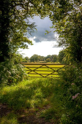 looks like a gate at the holiday house we stayed in between Balcombe & Handcross, Brantrdige Park. magical visits there for 6 yrs! Sussex, England