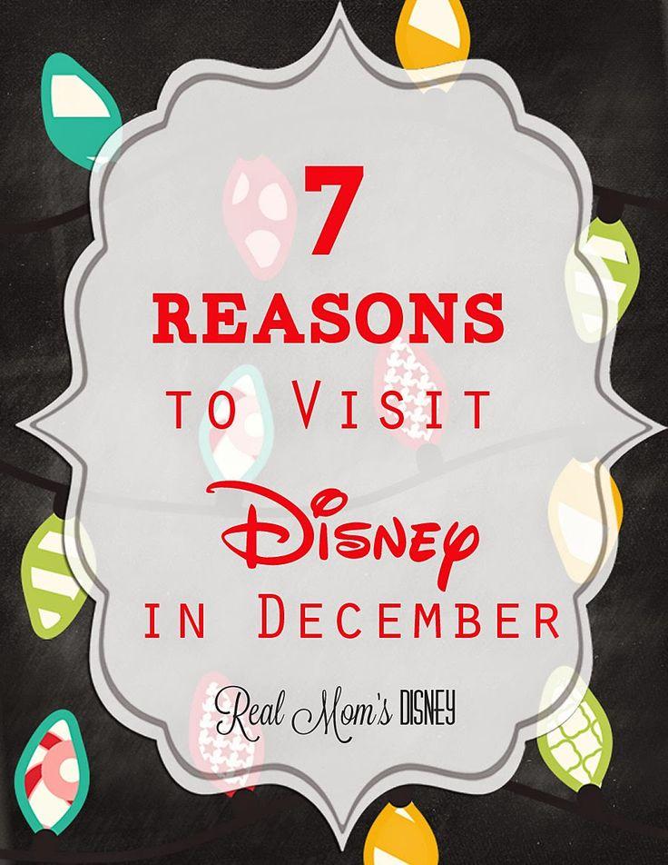 7 Reasons to Visit Disney in December