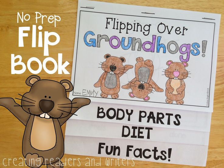 Blog Post from Creating Readers and Writers: Come On, Phil! {What Is Groundhog Day? A Holiday Reader for Primary Students} #groundhogday