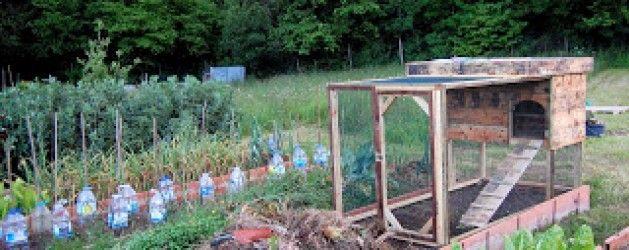 17 mejores im genes sobre gallineros en pinterest for La bioguia jardines