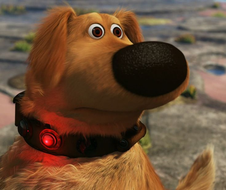 Dug The Dog From Pixars Up Who I Swear Was Modeled