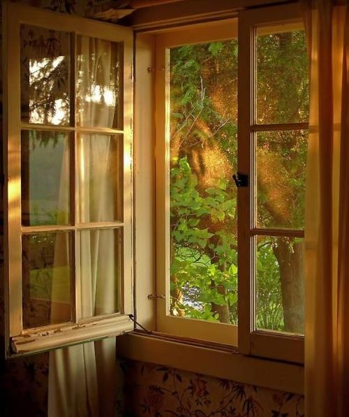 Looking out to make believe.Doors, Old House, Cabin, Ears Mornings, Dreams House, Open Windows, View, Summer Breeze, Mornings Lights