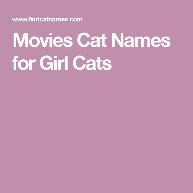 Movies Cat Names for Girl Cats