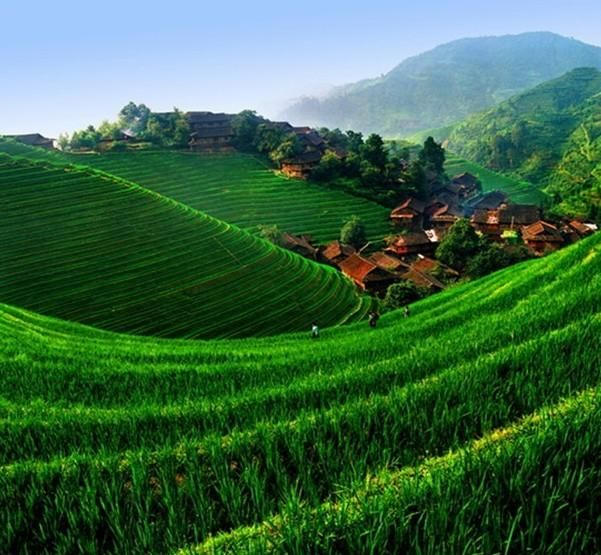 Cool Nature Pictures: China - Nature Beauty
