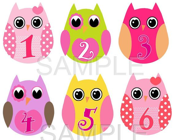 Monthly Baby Onesie Stickers  Super Cute by BabySmilesBoutique