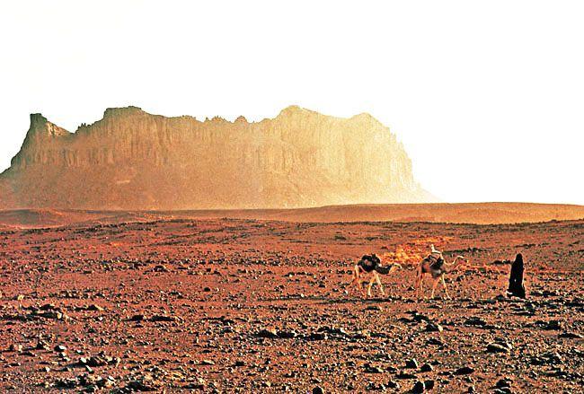 Algerian Desert Plateau - Bing Images