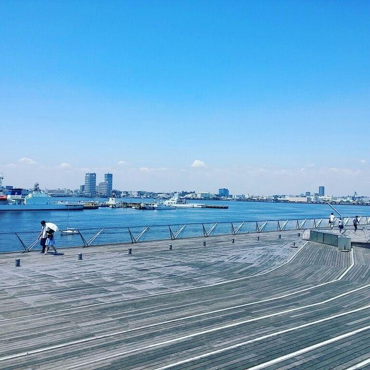 青いね。横浜。