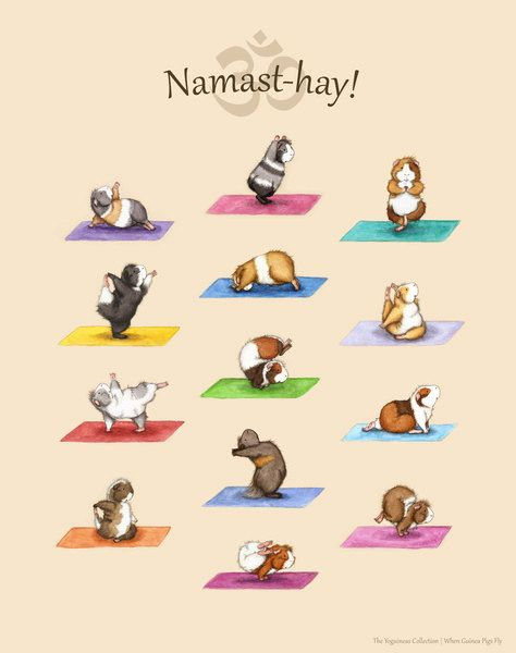 The Yoga Guinea Pigs Collection Art Print - Yoguineas Namast-Hay Poster cute yoga art