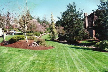 20 Best Images About Lawn Care Amp Landscaping On Pinterest