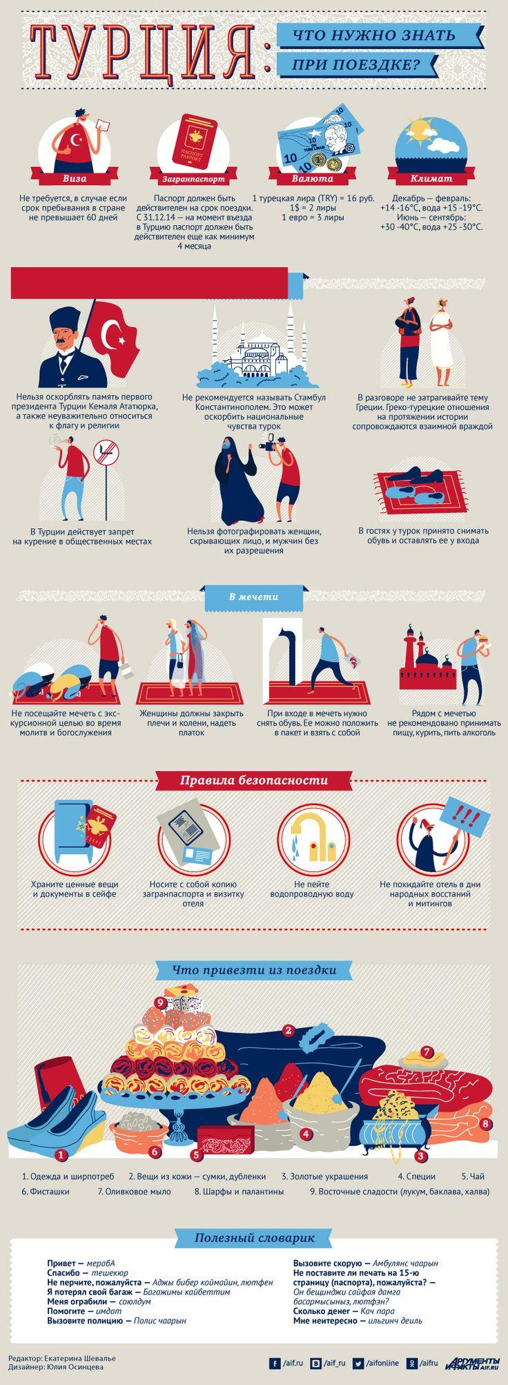 Что нужно знать при поездке в Турцию? Инфографика | Инфографика | Аргументы и…