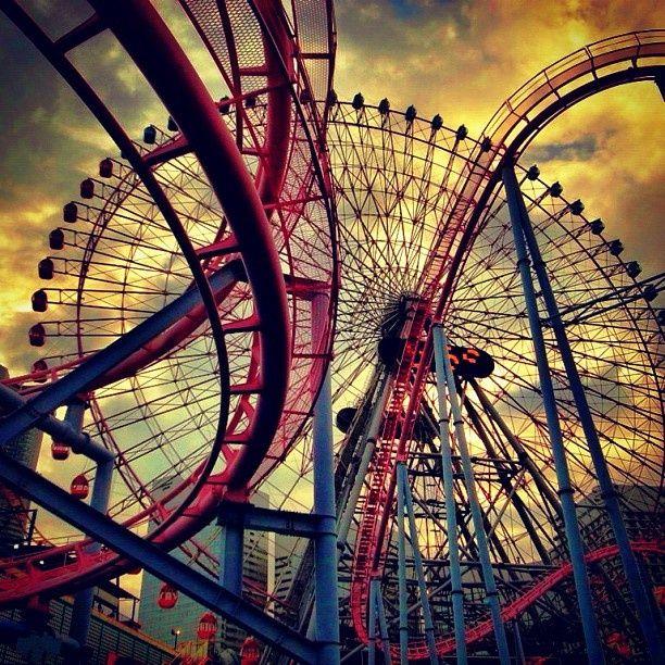 224 Best Roller Coasters Images On Pinterest