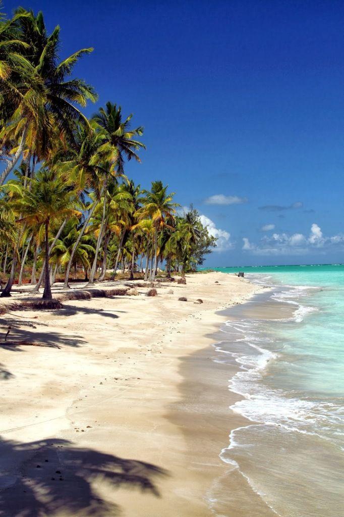 Praia dos Antunes, Maragogi - Alagoas, Brasil