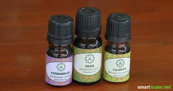 Mit diesen ätherischen Ölen stellst du dein eigenes Bio-Mückenspray in wenigen Sekunden selber her - für nur einen Euro