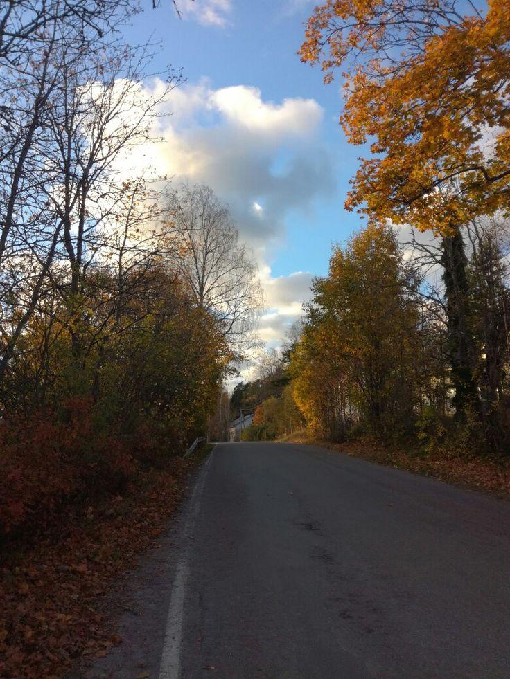 Finland, Hajala. Autumn (2016)