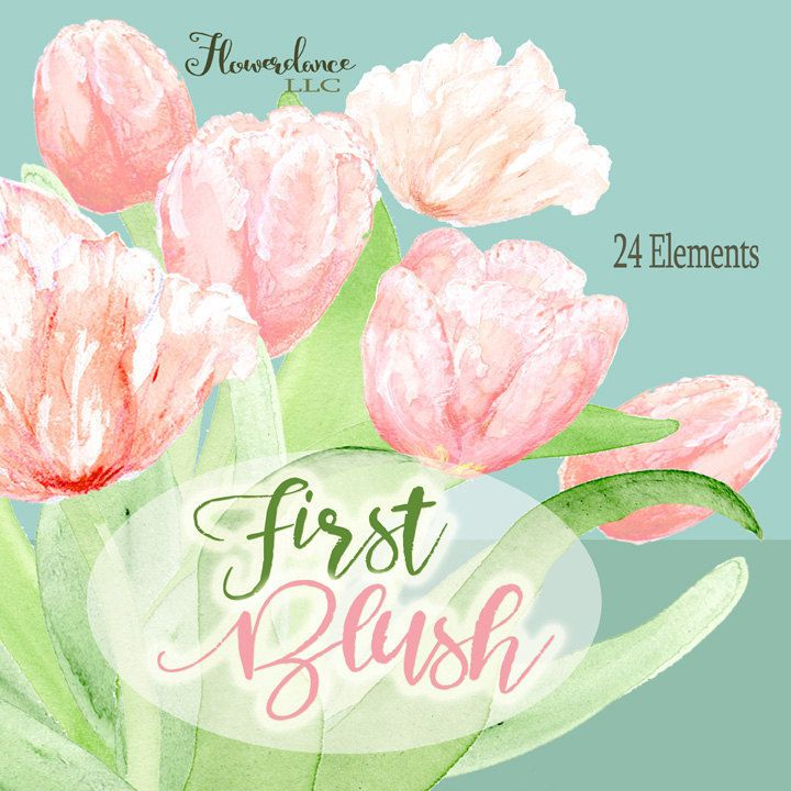 Pink flower clipart,Blush flower Clipart,Blush Tulips Clipart,Watercolor Clipart, tulip clipart, clipart spring, floral png clipart by FlowerdanceLLC on Etsy