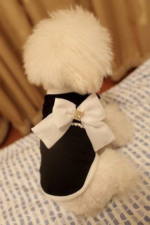 Pet clothes dog clothes summer wear clothes tidy clothes big bowknot on Etsy, $12.00