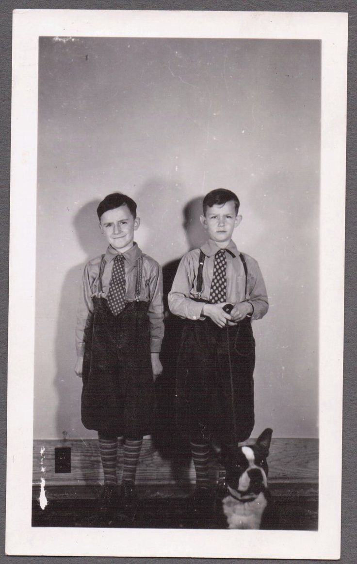 Vintage berwick pennsylvania boston terrier dog brothers in knickers old photo
