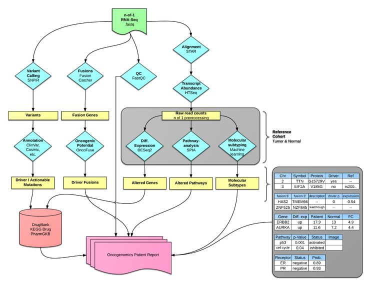 OncoRep – an n-of-1 reporting tool to support genome-guided treatment for breast cancer patients using RNA-sequencing - Breast cancer comprises multiple tumor entities associated with different biological features and clinical behaviors, making individualized medicine a powerful tool to bring the right drug to the right patient. Next generation sequencing of RNA (RNA-Seq) is a suitable method to detect targets for individualized treatment. Challenges that arise are:  i) preprocessing and…