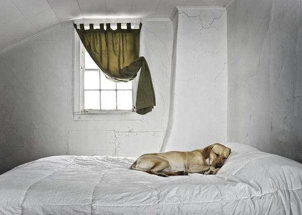 25+ legjobb ötlet a Pinteresten a következővel kapcsolatban Joop - joop möbel wohnzimmer
